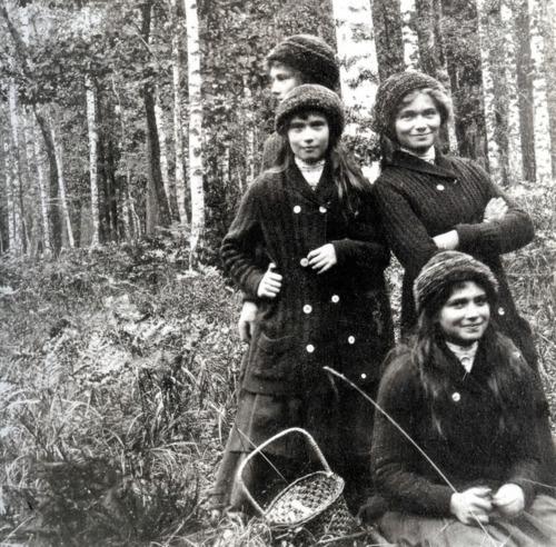 1913, Mushroom Picking